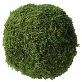 stabilized moss ball