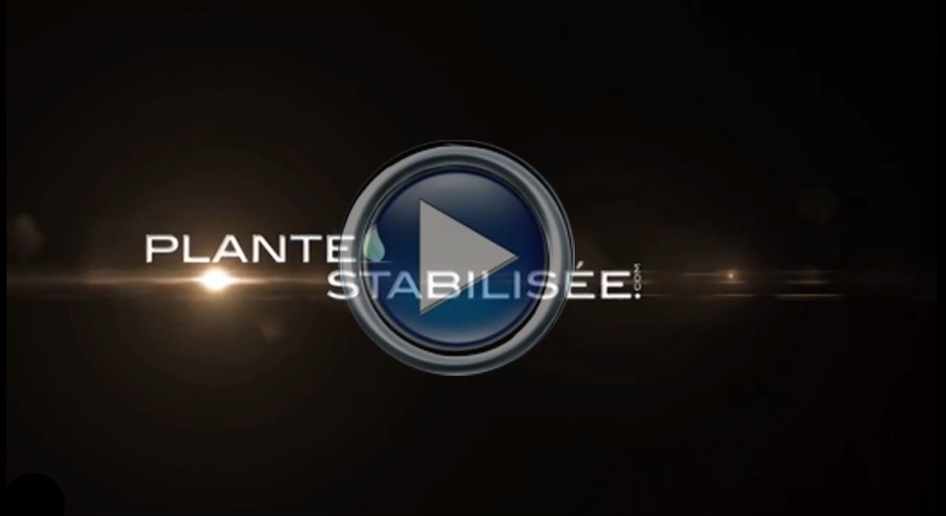 Vidéo de présentation de Plantestabilisee.com