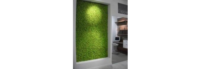 Tableaux lichen